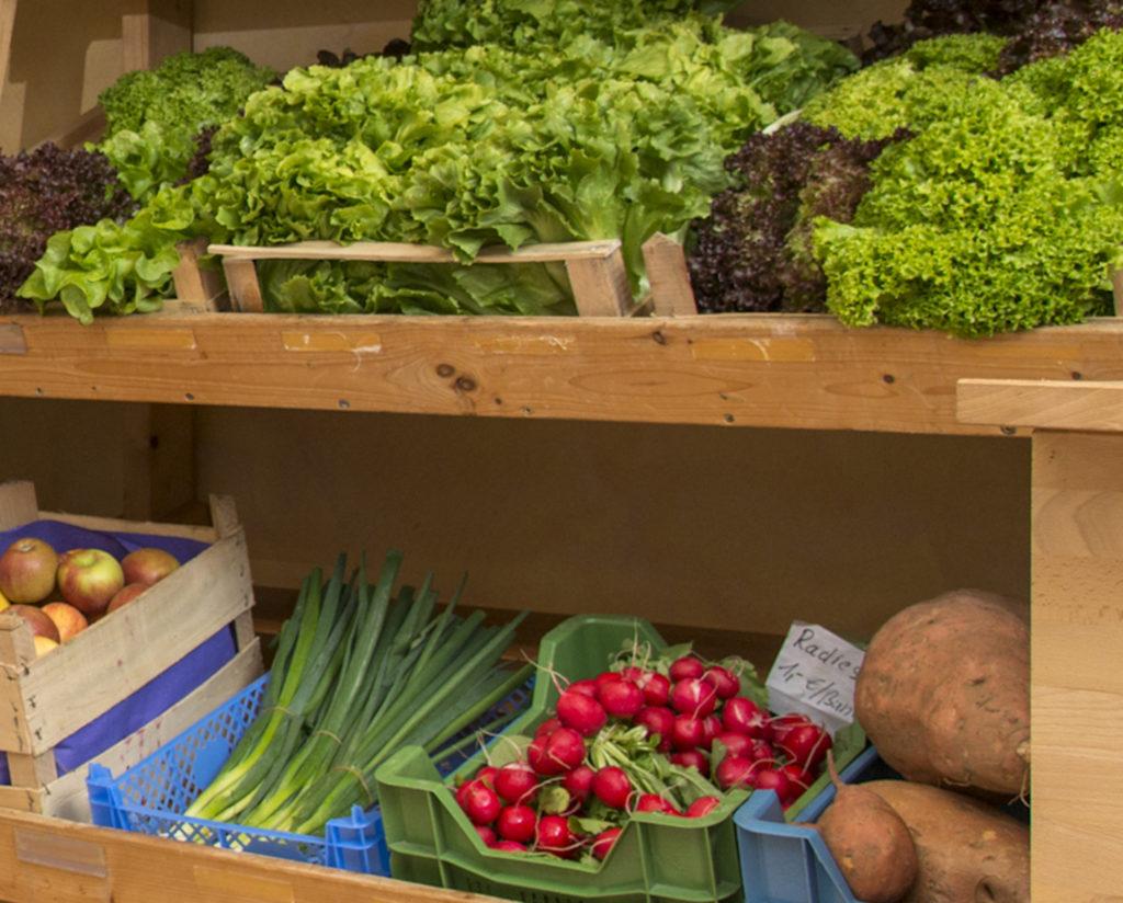 Regal mit Obst und Gemüse
