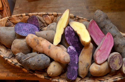Korb mit Kartoffelauswahl